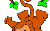 Bền bỉ như con khỉ
