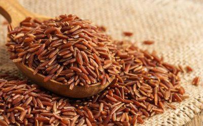 4 lợi ích của gạo lứt! Ăn gạo lứt để giảm cân và thải độc