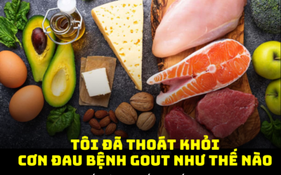 Chuỗi Bài Chia Sẻ: Tôi Đã Thoát Khỏi Cơn Đau Bệnh Gout Như Thế Nào Bài 2: Chế độ ăn cho người bệnh gout: ăn gì, tránh gì